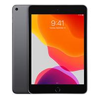 iPad Mini 1st Gen Wi-Fi