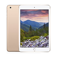 iPad Mini 4th Gen Wi-Fi + Cellular
