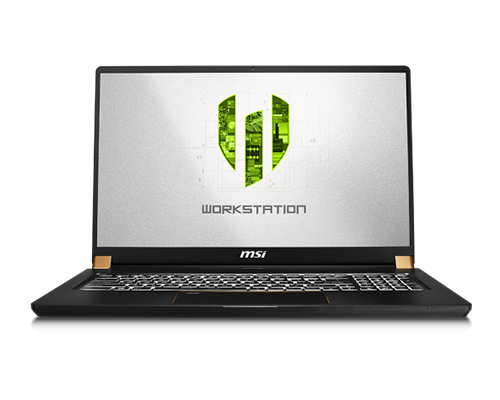 MSI WP Series